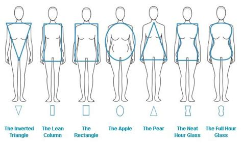 Expanded Body Shop Reference for Dressing or Design
