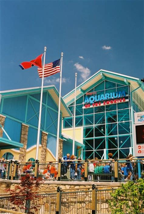 Discounted Pigeon Forge Attraction Tickets Revealed by