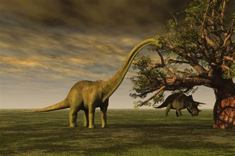 Scientists Say They Can Recreate Living Dinosaurs Within