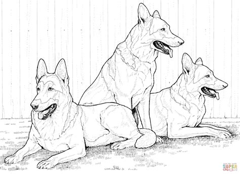 German Shepherd Dog Coloring Pages - Coloring Home