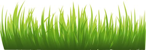 Grass png image, green grass png picture #44856 - Free